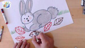 Come colorare il coniglietto