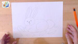 Come disegnare il coniglietto