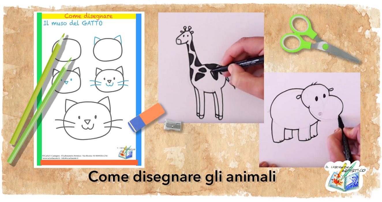 come disegnare gli animali